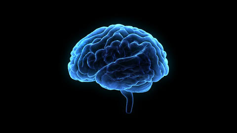 Brain Head 19 1 C1bA2 4k Animation