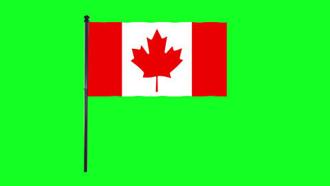 4K Canada Flag is waving in green screen Animation