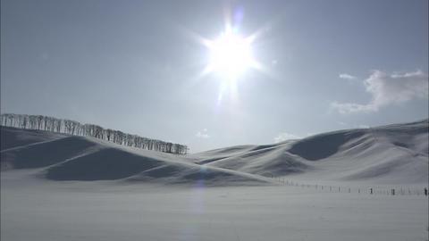 Sun Solar Live Action