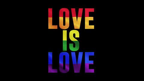 LGBT - Pride Day 2