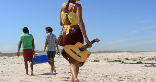 Group friends carrying picnic item on beach 4k Live Action