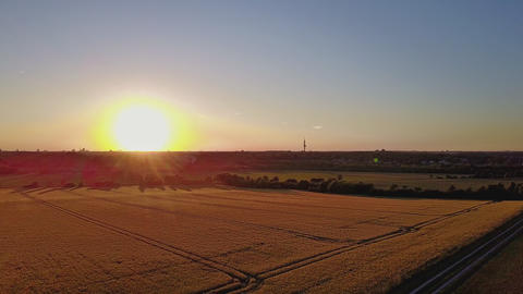 Aerial view of a wheat field in golden sunlight going down Filmmaterial