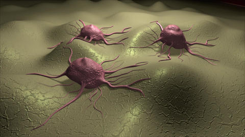 Visualization of several cancer cells on a cellular surface CG動画素材