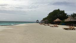 Beach Maldives Islands 4k video Footage