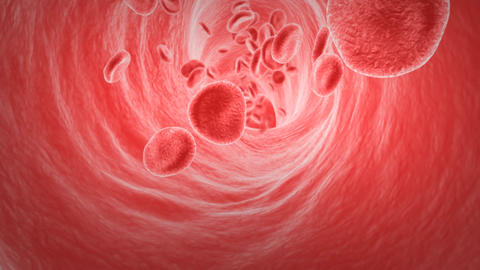 Blood flow animation Animation