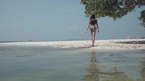 Seychelles. Praslin Island. Girl resting on an exotic island in the Indian Ocean Footage