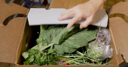 Hands open a box of fresh nutritious vegetables part of a community supported agriculture box GIF