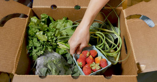 Hand going through a box of fresh organic, seasonal fruit and vegetables including ripe GIF