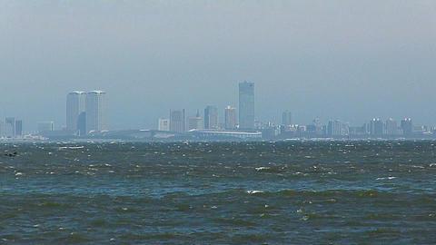 Tokyo bay ビデオ