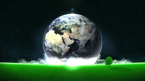Energy Saving,Eco,Earth,loop,tree,position center Animation