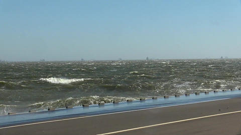 Tokyo bay strong wind and wave ビデオ