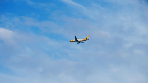 Airbus A320 SCOOT Airlines departing Live Action