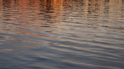 Close-up footage of gentle lake ripples and waves at sunset Footage