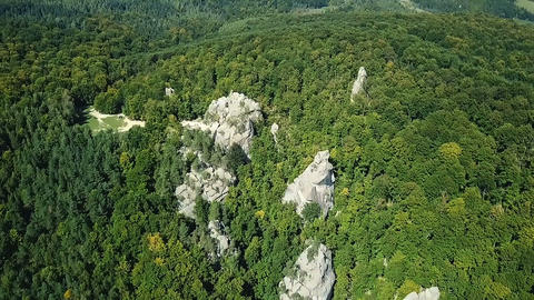 Carpathian Forests From a Bird Flight Height Footage
