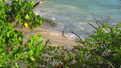 Seychelles. Praslin Island. Beautiful view of the sandy beach, the ocean and Footage