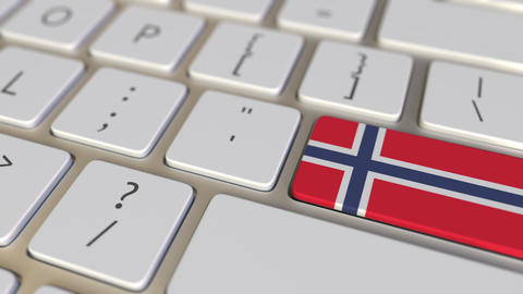 Key with flag of Norway on the keyboard switches to key with flag of Germany Live Action