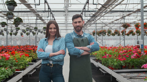 Agricultural Engineer Walks Through Industrial Greenhouse with Professional Footage