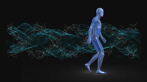 Prototype of the blue man walking Animation