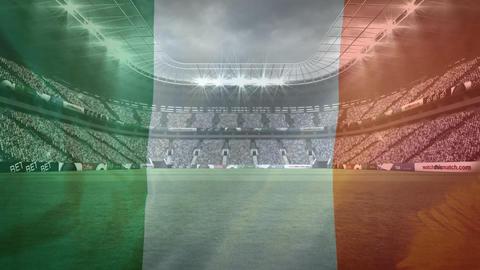 Irish flag against a Full stadium on the background Animation
