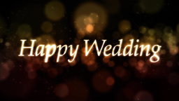 Happy Wedding ループ ウェディング 素材 Stock Video Footage