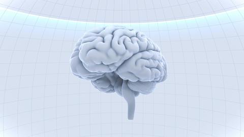 Brain Head 19 2 B1dW 4k Animation
