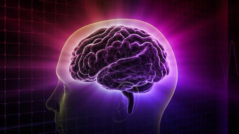 Brain Head 19 2 C1gD 4k Animation