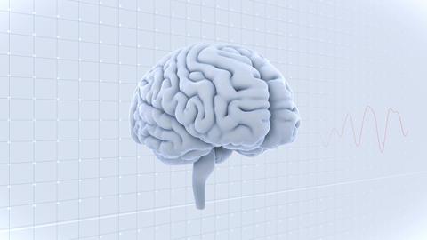 Brain Head 19 2 D1gW 4k Animation