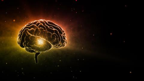 Brain Head 19 2 A2bD 4k Animation