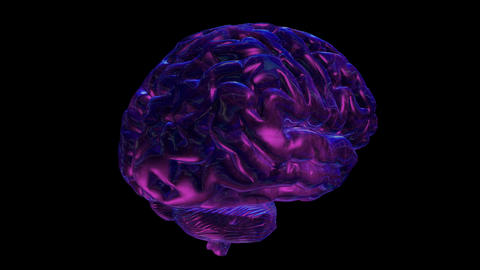 Cyclically rotating computer model of the human brain Animation
