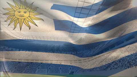 Argentina flag floating in the sky Animation