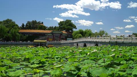 Chinese garden in Beijing - famous public park Beihai Park Live Action