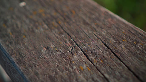 Real old wood texture Vintage background. Old plaque covered with painted paint Footage