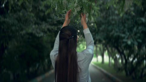 The woman gently touches and sniffs white acacia. The woman and a beautiful Footage