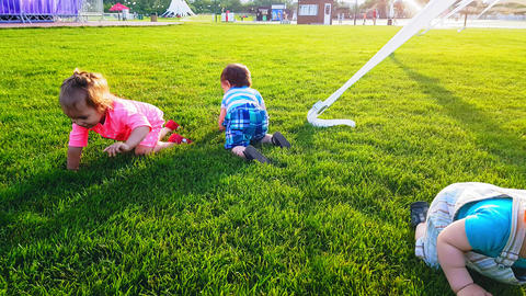 Three babies crawling on the bright green grass on a warm summer day Footage