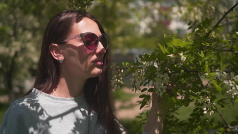 The woman gently touches and sniffs white acacia. Beautiful woman in sunglasses Footage