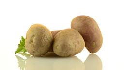 New potato tuber Footage
