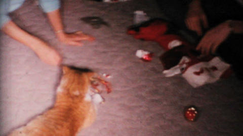 Cat Is Teased With Christmas Ornament 1967 Vintage 8mm film Footage