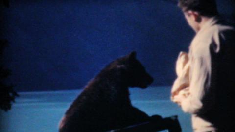 Two Men Feeding Bear Cubs At Lake Louise 1958 Vintage 8mm... Stock Video Footage