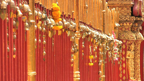 Gold Leaves Dangling At The Temple Stock Video Footage