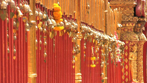 Gold Leaves Dangling At The Temple Footage