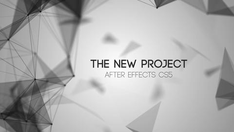 WhiteSpace Titles After Effects Template