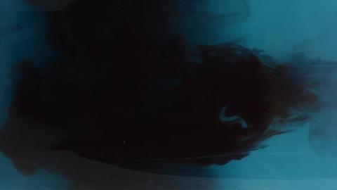 Black ink in blue water. Acrylic splash on white background, art, liquid, cloud footage black, blue Footage
