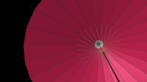 Japanese Umbrella:HQ CG動画