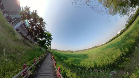 Little Planet View of Pathway in Ansan Hwarang Recreation Area 15 Live Action