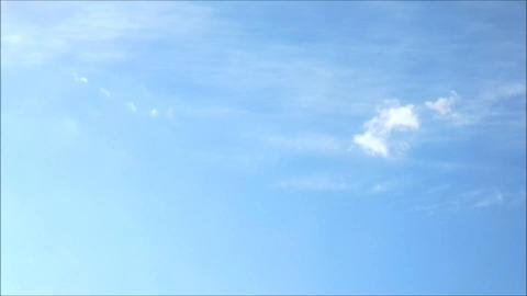 Moving Sky ライブ動画