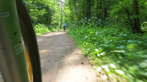 cyclist travels along bushy green park and rides bicycle Footage