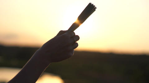 A stack of money in the female hand against the sunlight at sunset, slow motion Footage