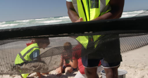 Volunteers cleaning beach on a sunny day 4k Live Action