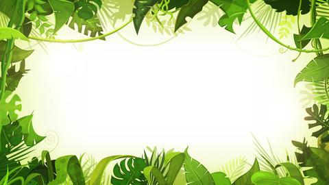 Jungle Tropical Landscape Animation Background Loop Animation
