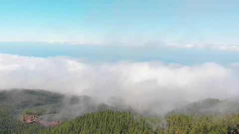 Drone flies through the clouds above a thick green forest. Lots of clouds over Footage